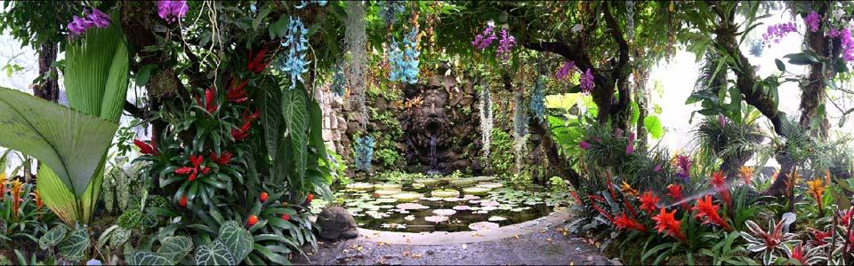 Visit ischia giardini la mortella for Noleggio della cabina del parco cittadino